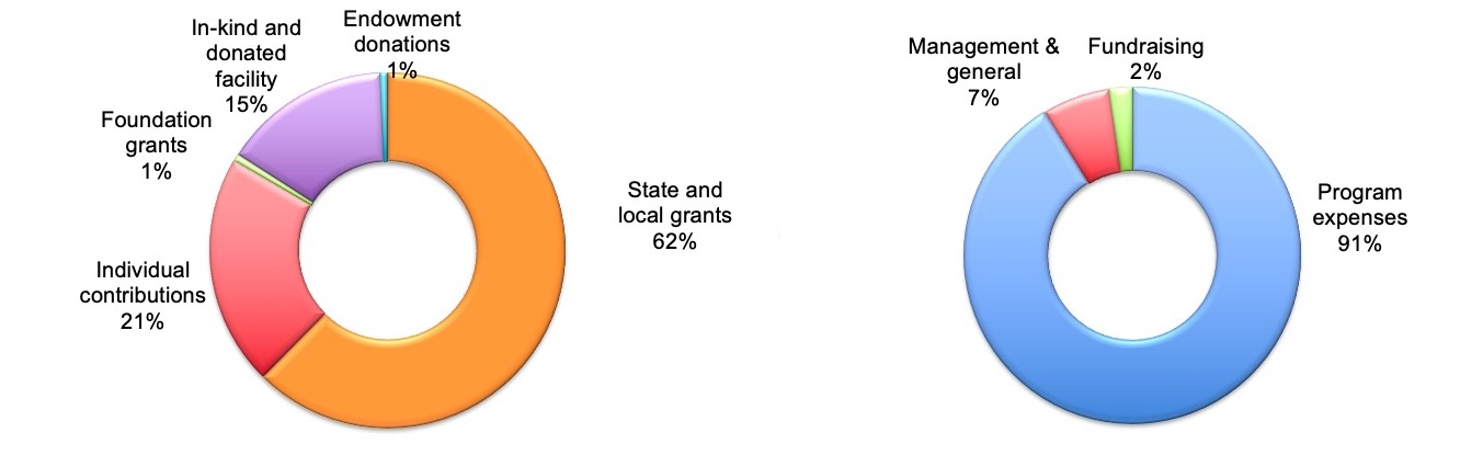 Pie Chart showing breakdown of annual income and expenses