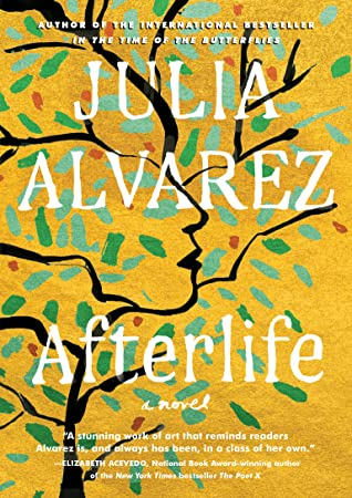 Cover image of Afterlife