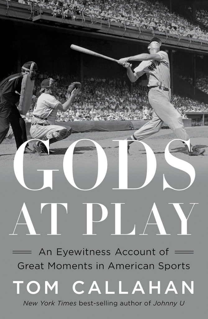 Cover image of Gods at Play